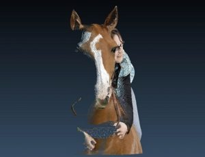 3d-foto-umwandlung-laser-tiere-glas-portraits-3