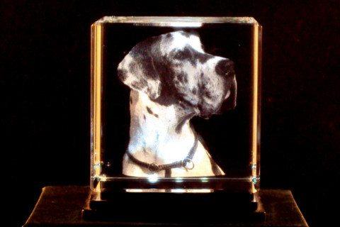 Glasblock mit 3D-Modell ab Foto