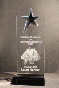 Schlicht&Einfach Stern 3D Laser SwissArt Mitarbeitergeschenk